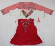 Vintage Embroidered Tops 52 pc 21 lbs 0629208-21